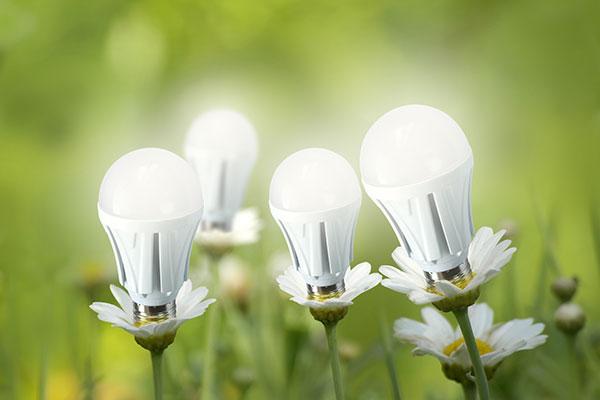 LED Leuchten auf der Wiese